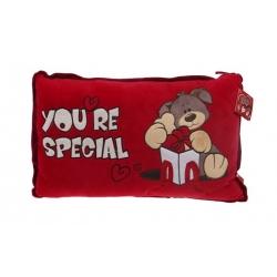 Červený polštářek You're special