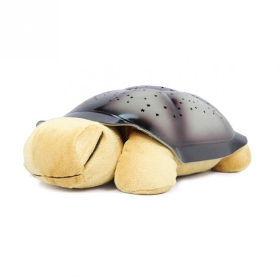 Svietiaca korytnačka